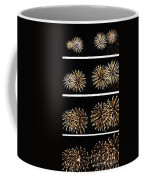 Firework Lifecycle 1 Coffee Mug