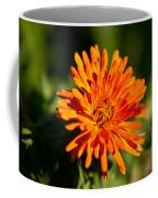 Firey Sunburst Coffee Mug