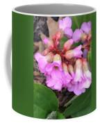 First Blooms Coffee Mug