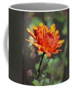 First Mum For Fall Coffee Mug by Sandi OReilly