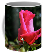 First Petal Coffee Mug