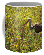 First Year White Ibis Coffee Mug