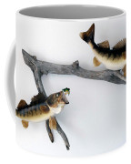 Fish Mount Set 06 A Coffee Mug