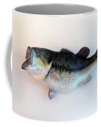 Fish Mount Set 07 A Coffee Mug