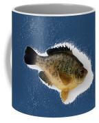 Fish Mount Set 08 C Coffee Mug