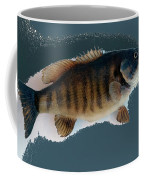 Fish Mount Set 10 B Coffee Mug