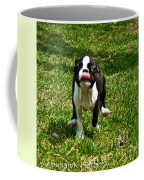 Fleet Feet Coffee Mug