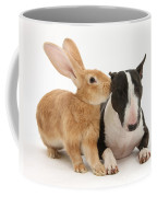 Flemish Giant Rabbit And Miniature Bull Coffee Mug