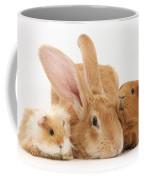 Flemish Giant Rabbit With Guinea Pigs Coffee Mug
