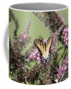 Flitter - Butterfly - Swallowtail Coffee Mug