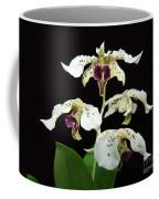 Flock Of Dendrobium Coffee Mug