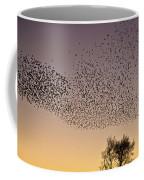 Flock Of European Starlings Coffee Mug
