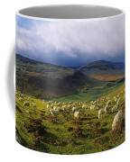 Flock Of Sheep Grazing In A Field Coffee Mug