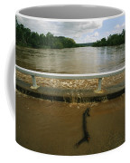 Flood Waters Rise To Meet A Bridge Coffee Mug by Randy Olson