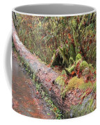 Flooded Bridge Coffee Mug