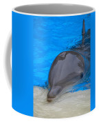 Published Secret Lives Dolphins Coffee Mug