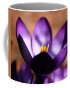 Catching Crocus  Coffee Mug