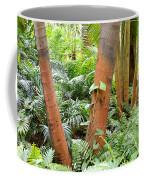 Florida Palms And Ferns Coffee Mug