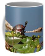 Florida Redbelly Turtle Coffee Mug