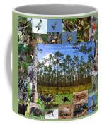 Florida Wildlife Photo Collage Coffee Mug