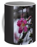 Flower For A Friend Coffee Mug