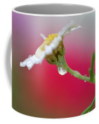 Flower In Red Coffee Mug