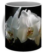 Flower Painting 0004 Coffee Mug