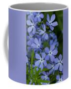 Flower Wild Blue Phlox 1 B Coffee Mug