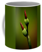 Flowerbuds Coffee Mug