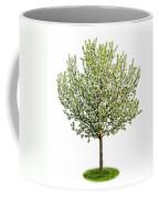 Flowering Apple Tree Coffee Mug