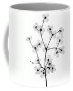 Flowering Dogwood, X-ray Coffee Mug