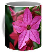 Flowering Tobacco Coffee Mug