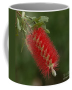 Flowers Of New Zealand 1 Coffee Mug