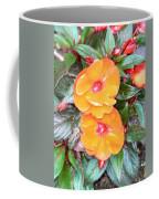Flowers Plastic Or Real  Coffee Mug