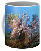 Fluffy Brown, Pink And Red Coffee Mug