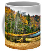 Fly Pond On Rondaxe Road II Coffee Mug