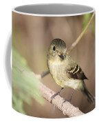 Flycatcher On A Branch Coffee Mug
