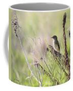 Flycatcher On A Twig Coffee Mug