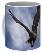 Flying European Sea Eagle I Coffee Mug