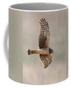Flying Harrier Coffee Mug