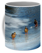 Follow The Leader Duck Style Coffee Mug