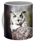 Followed Owl Coffee Mug