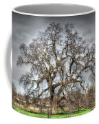 Folsom Oak Tree Coffee Mug