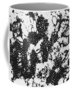 Foot And Mouth Disease Coffee Mug