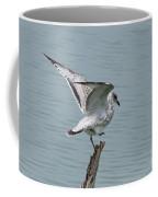 Foot Up Wing Test Coffee Mug