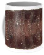 Forensic Helpers, Black Blow Fly Coffee Mug