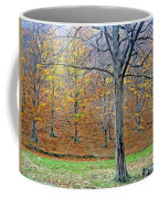 Forest - Jiu Defile Coffee Mug