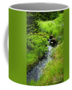 Forest Creek In Newfoundland Coffee Mug