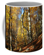 Forest Fall Colors 4 Coffee Mug