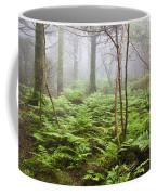 Forest Ferns On A Foggy Morning Coffee Mug